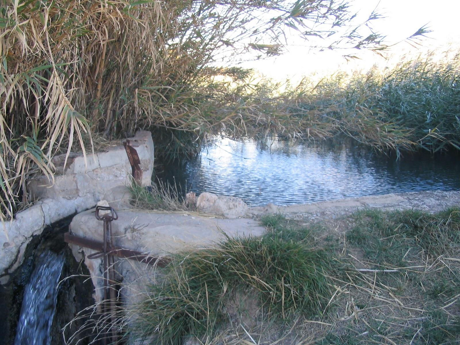 Azuaraorg blog el sistema de riego en azuara for Alberca para riego