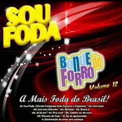 Download Bonde do Forró Sou Foda Vol 12