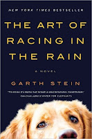 Cover of The Art of Racing in the Rain by Garth Stein