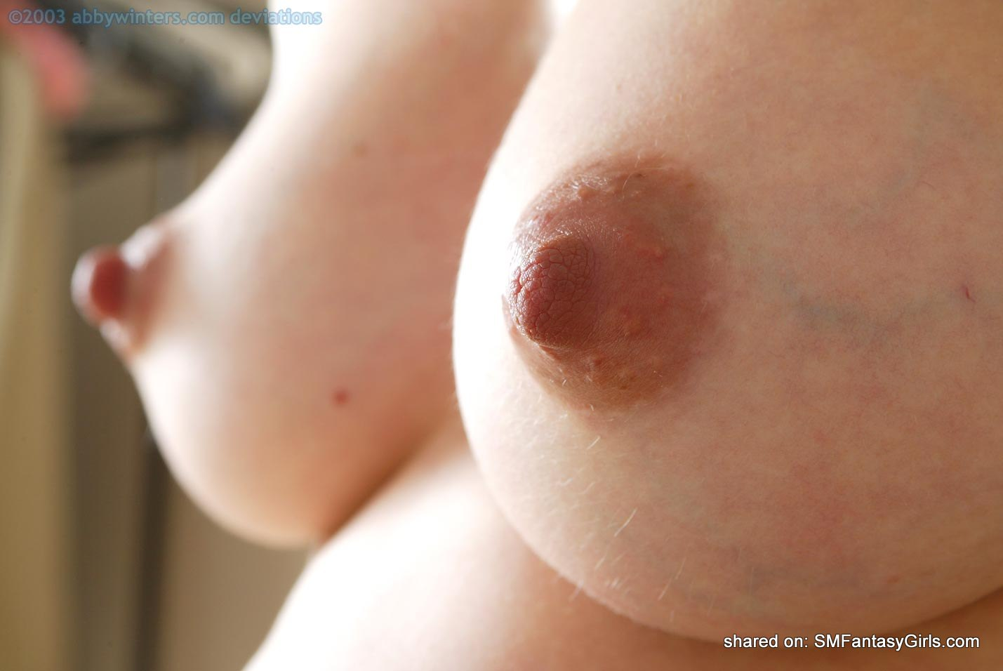 Big Puffy Nipples Close Up