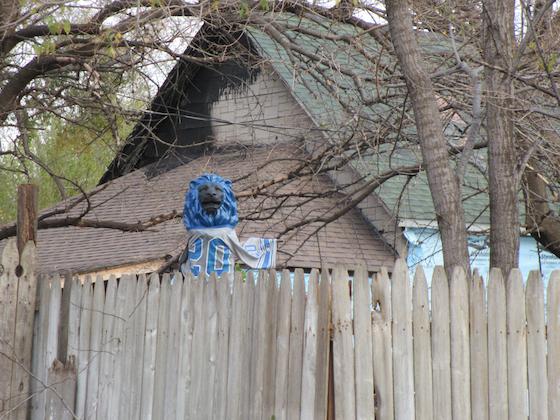 Detroit Lion scarecrow