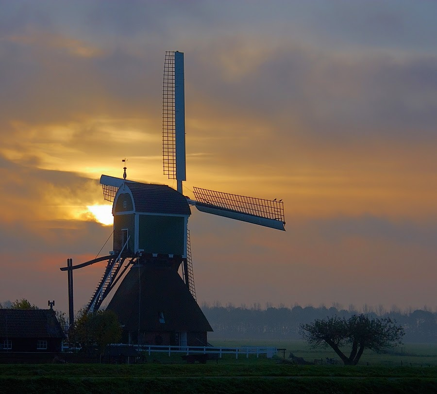 Molen bij zonsopkomst