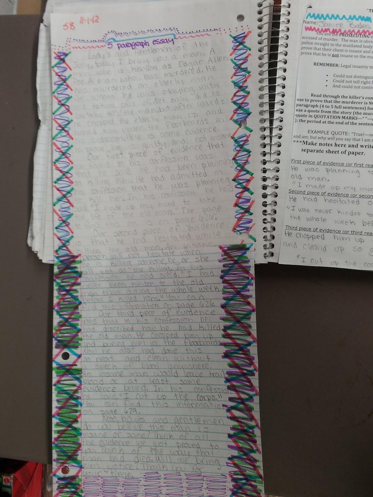 essay insanity