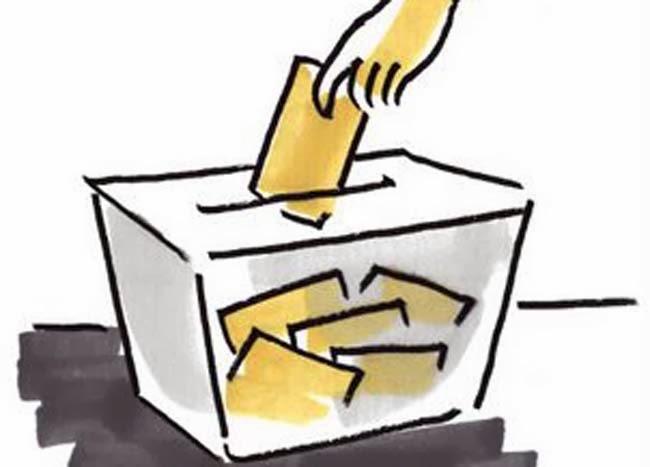 http://www.colegiosantamariamicaela.com/index.php/35-circulares/336-proceso-de-votacion
