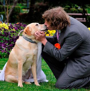 رجل استرالي يتزوج كلبته..اضغط هنا لمعرفة التفاصيل!