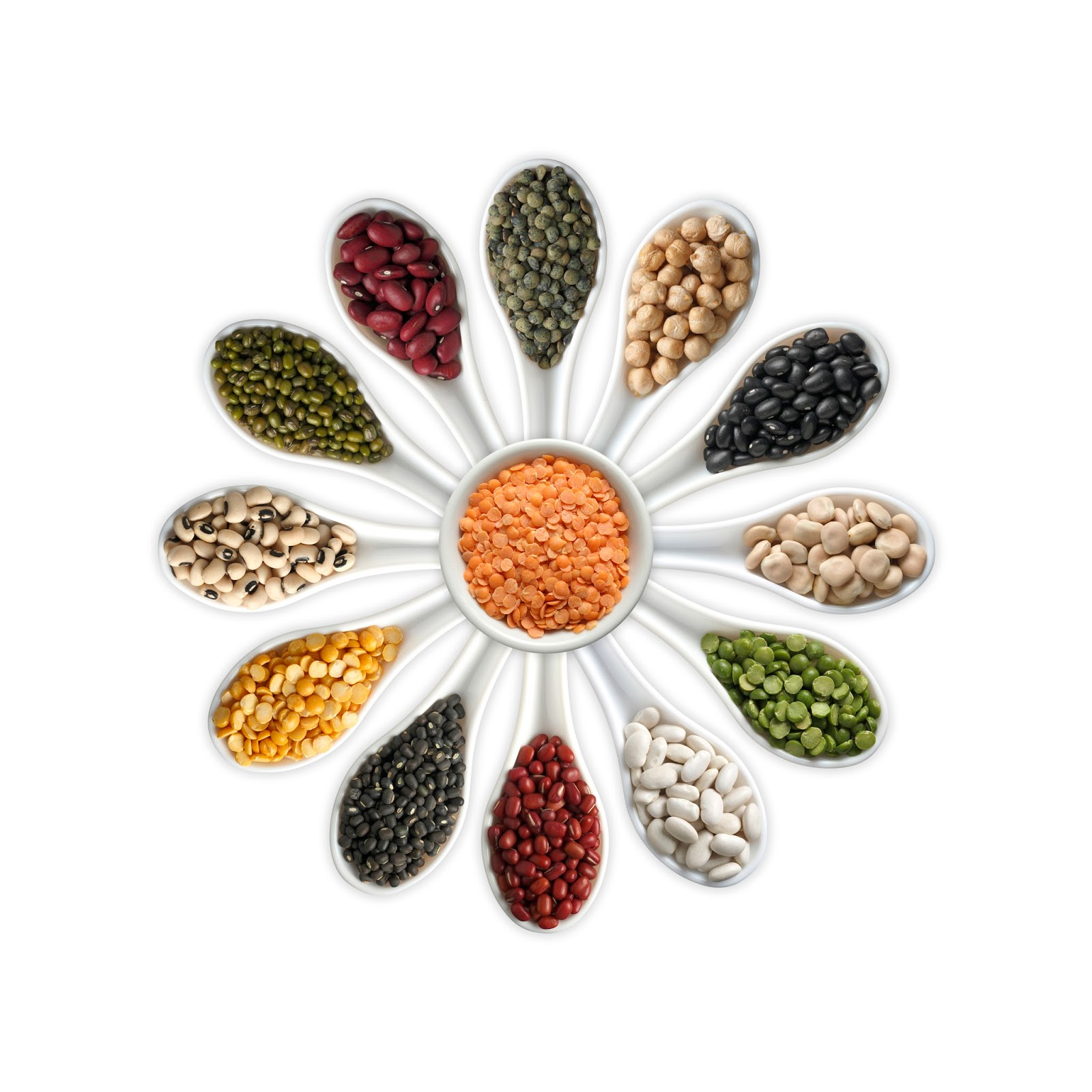 information about pulses Food grains items - offering general cereals, indian pulses, raw rice, parboiled rice, medicinal oil seeds, delicious beverages, medicinal spices from nathubhai.