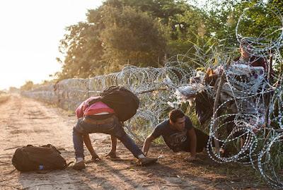 migránsok, illegális bevándorlás, Magyarország, határzár, migráció, bevándorlás, gyorstelepítésű drótakadály