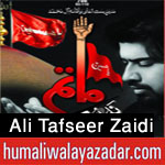 http://www.humaliwalayazadar.com/2015/06/ali-tafseer-nohay-2016.html