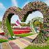 Flower Garden — AL-Ain Paradise
