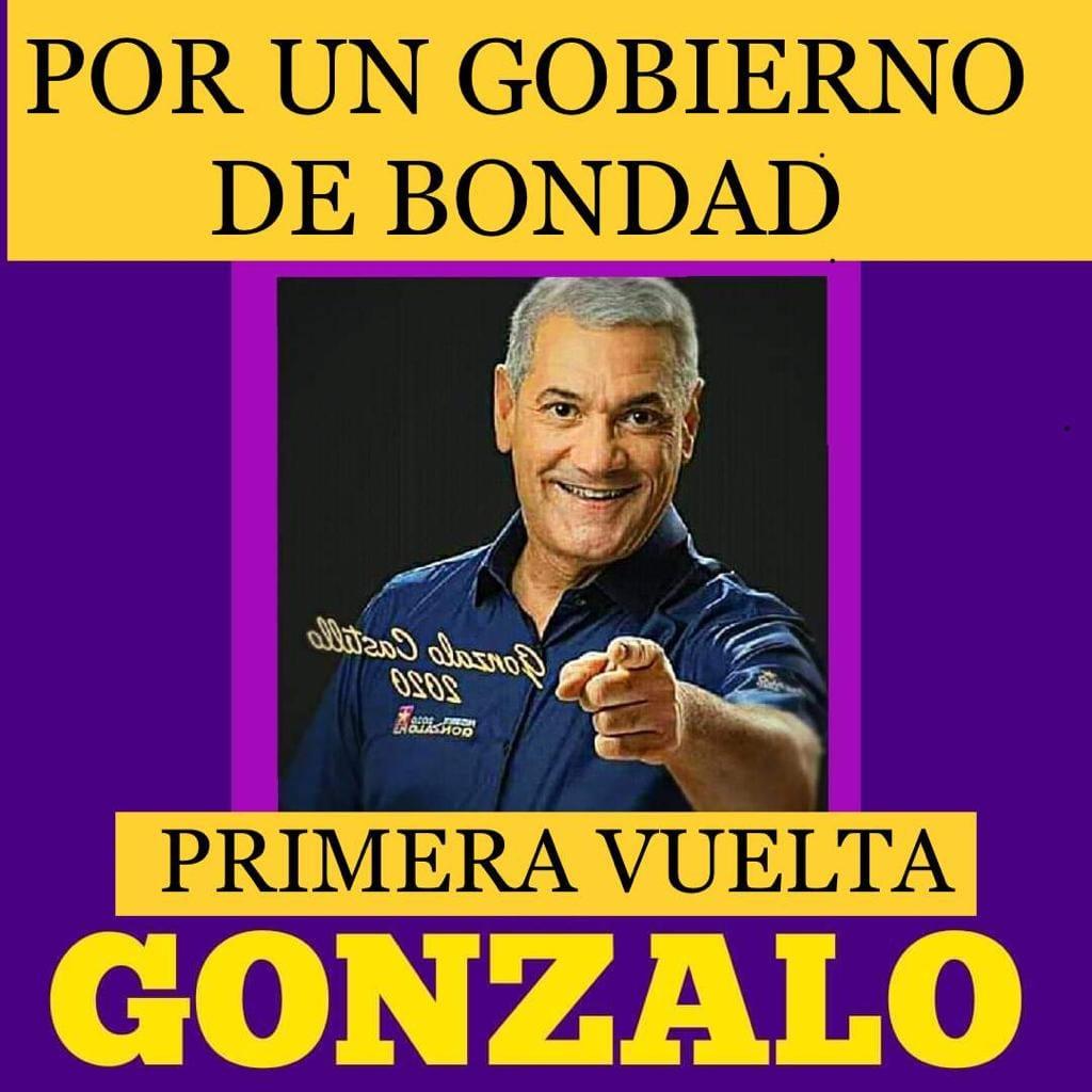 GONZALO CASTILLO, Presidente 2020-2024 PLD y Aliados