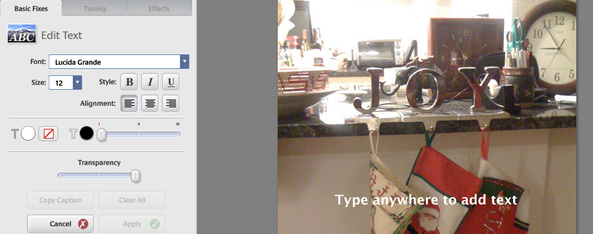 how to put text on a picture in picasa
