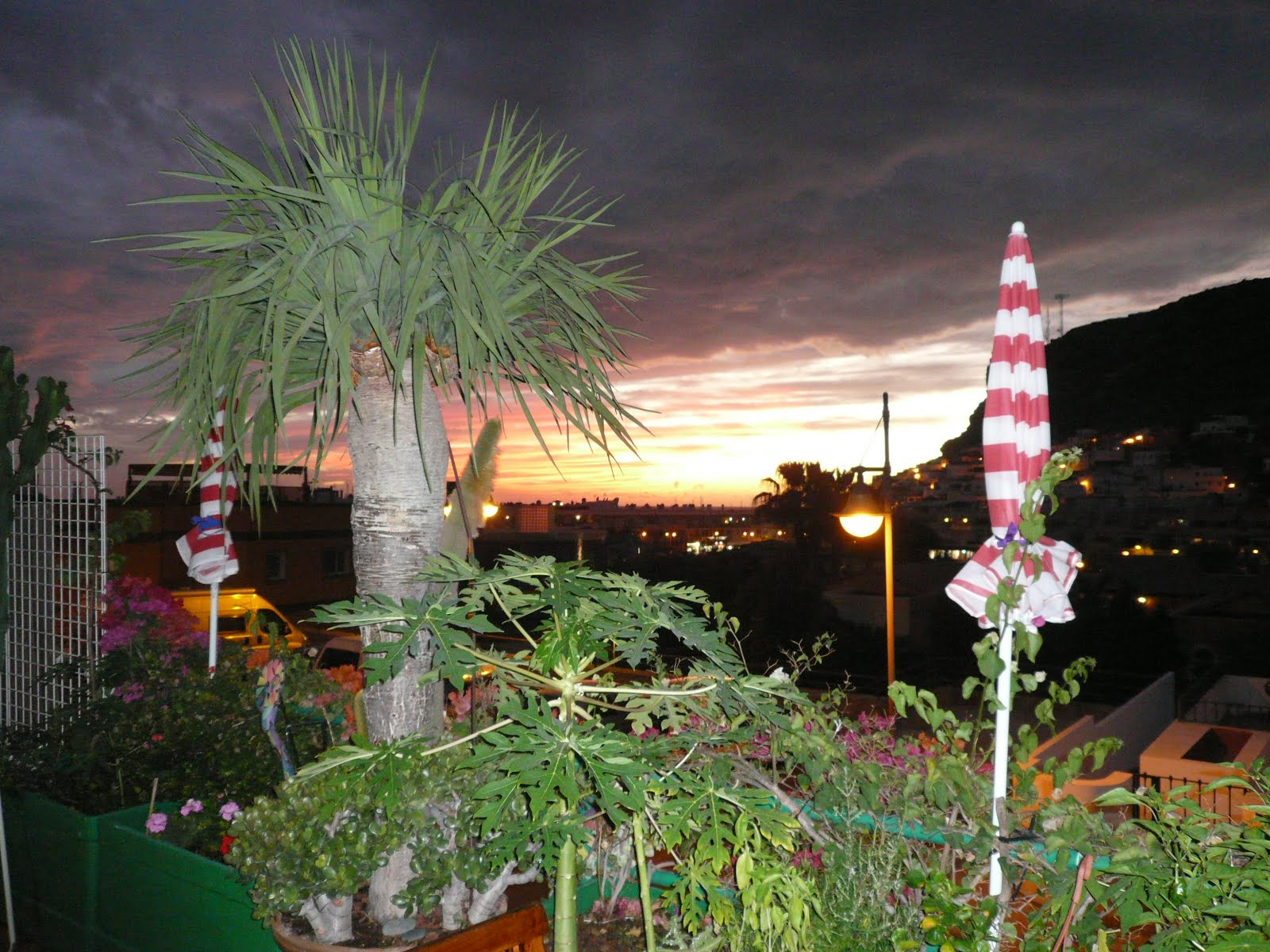 Casa Lila Terrace