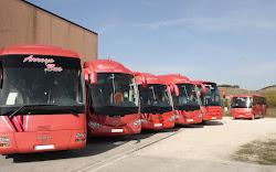 ARROYO BUS AUTOCARES DE BURGOS