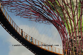 Skywalk suspended between Supertrees, Gardens by the Bay, Singapore