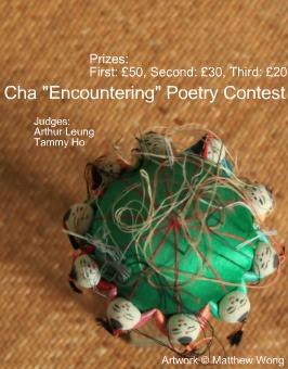 Roger foley essay contest prizes