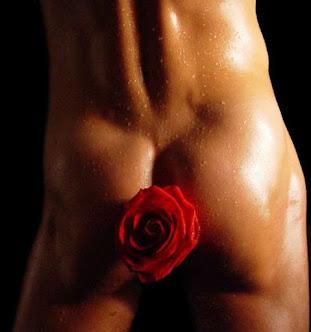 Дачное счастье - малина и роза... тачка, лопата, машина навоза.