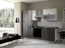 Cocinas modernas en color gris colores en casa for Cocinas integrales modernas para espacios pequenos