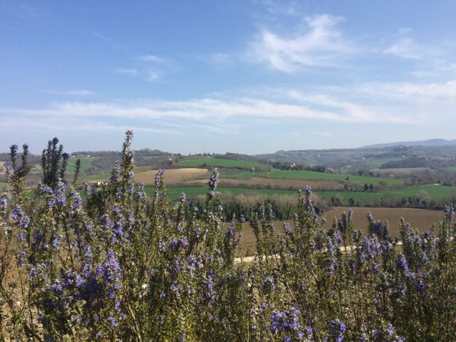 Day Trips from Rome // Todi