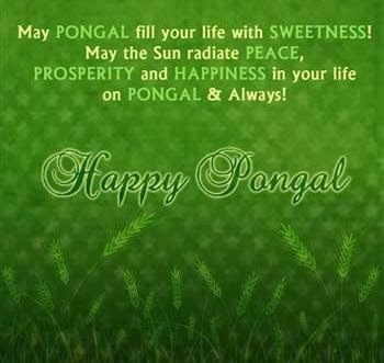 Tamil Pongal 2016 Sms Wishes in Tamil