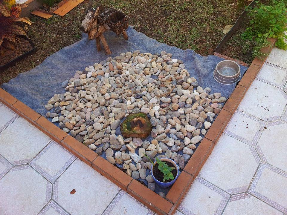 fazer do quintal um jardim ? Doitri.com