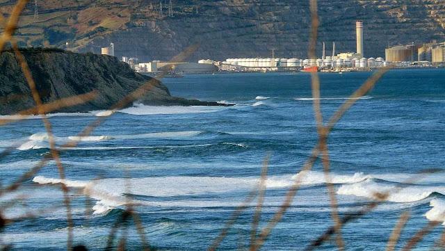 surf menakoz surf30 21