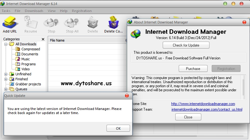 Internet Download Manager: the fastest download