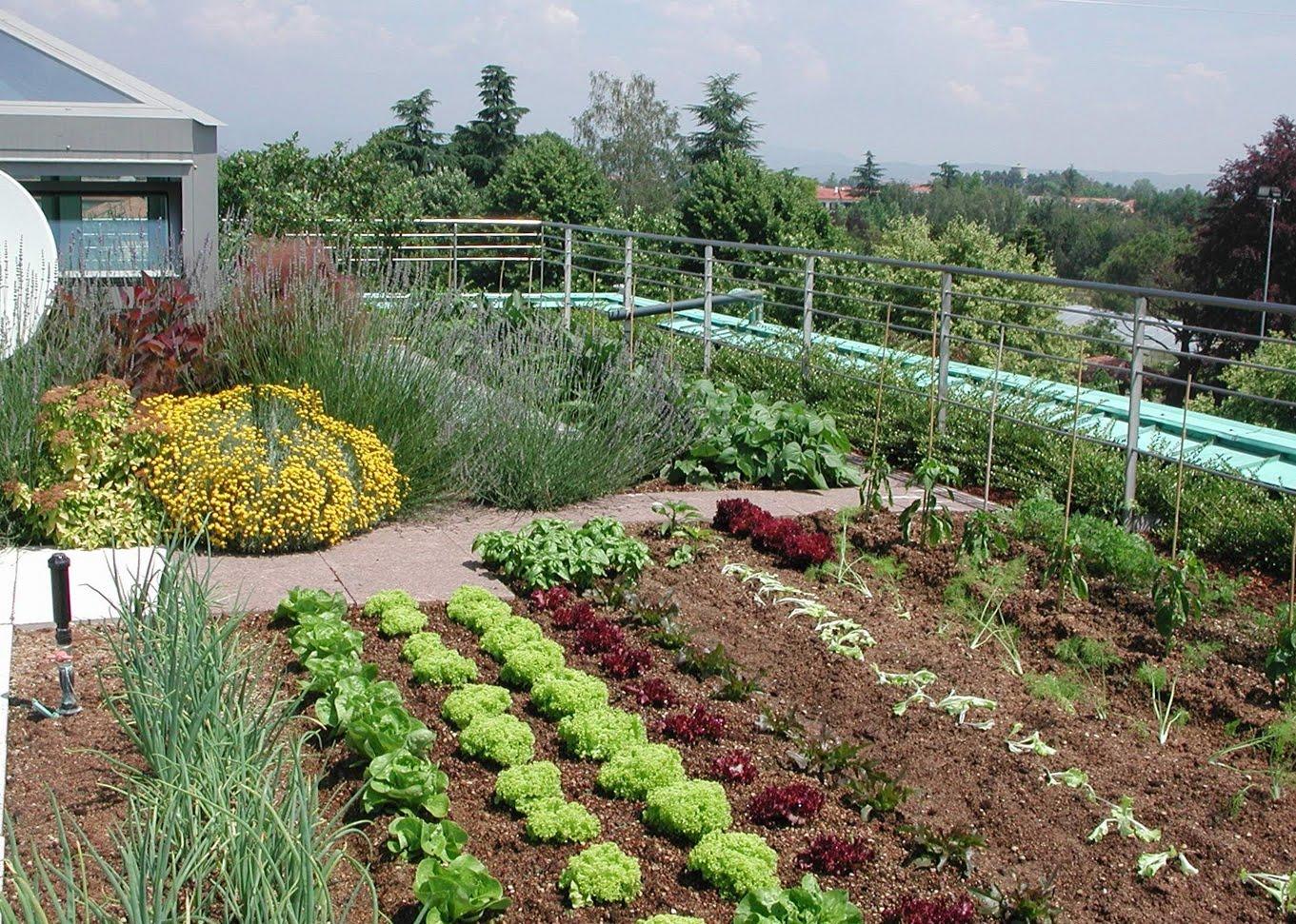 Metti un prato sul tetto con un giardino pensile - Giardino pensile terrazzo ...