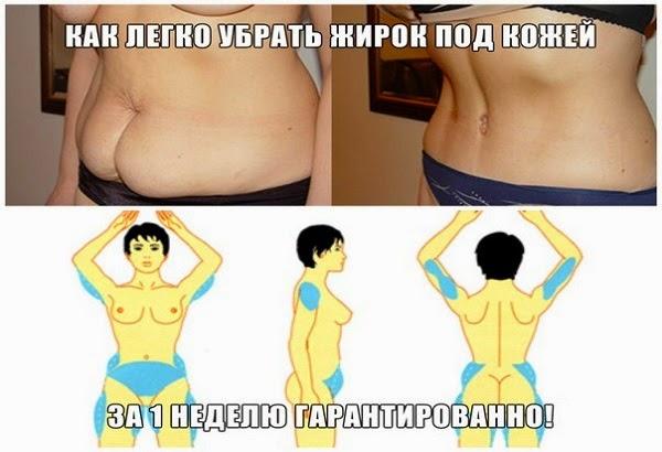 жир под животом