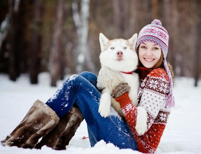 Jak przygotować na zimę psią budę