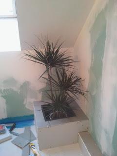 bac plante carrelé salle de bain