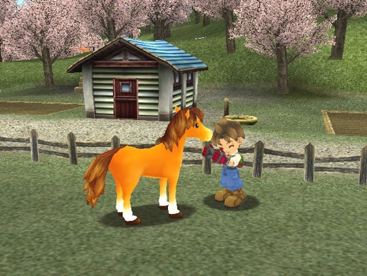 harvest moon wonderful life download for pc