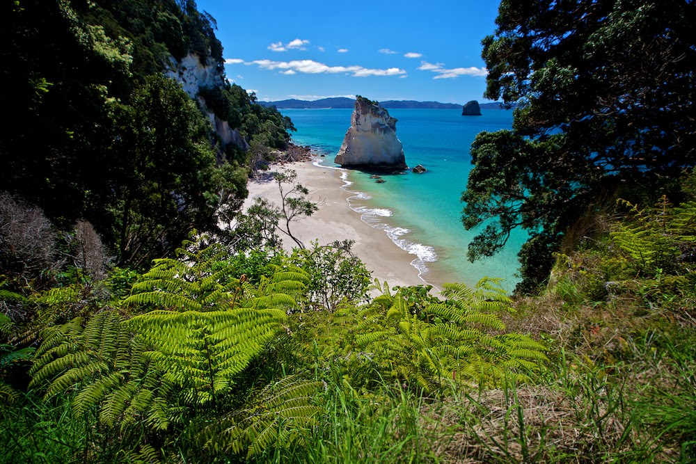 CATHEDRAL COVE BEACHCathedral Cove
