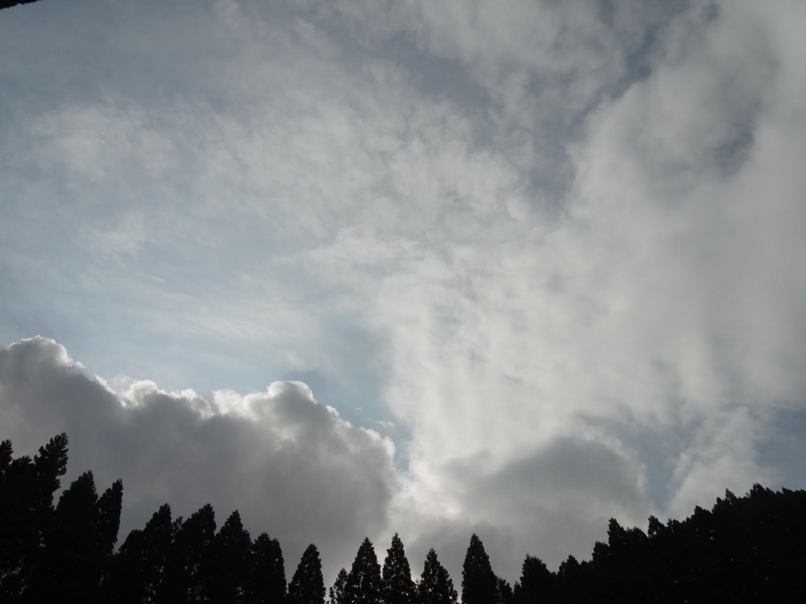 山陰の空は重苦しくて、考え事をするにはぴったりだ
