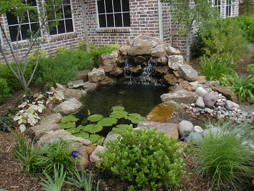 Grden pond ideas for backyard for Simple backyard ponds