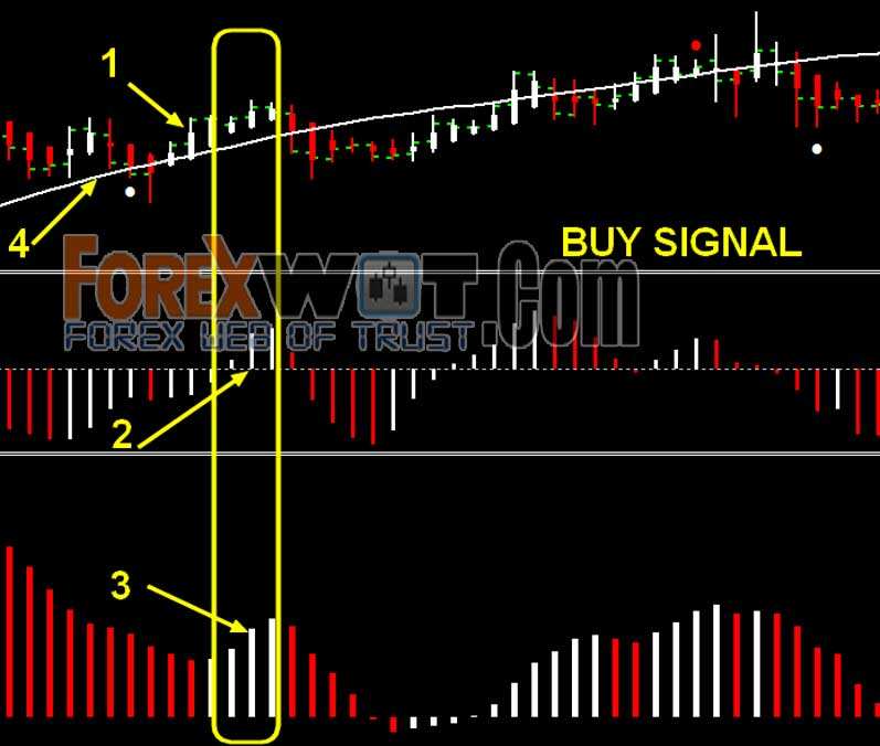 Forex easy pips formula