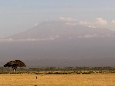 kilimanjaro, kenya, africa, Africa, África, paisatge africa, paisaje africa