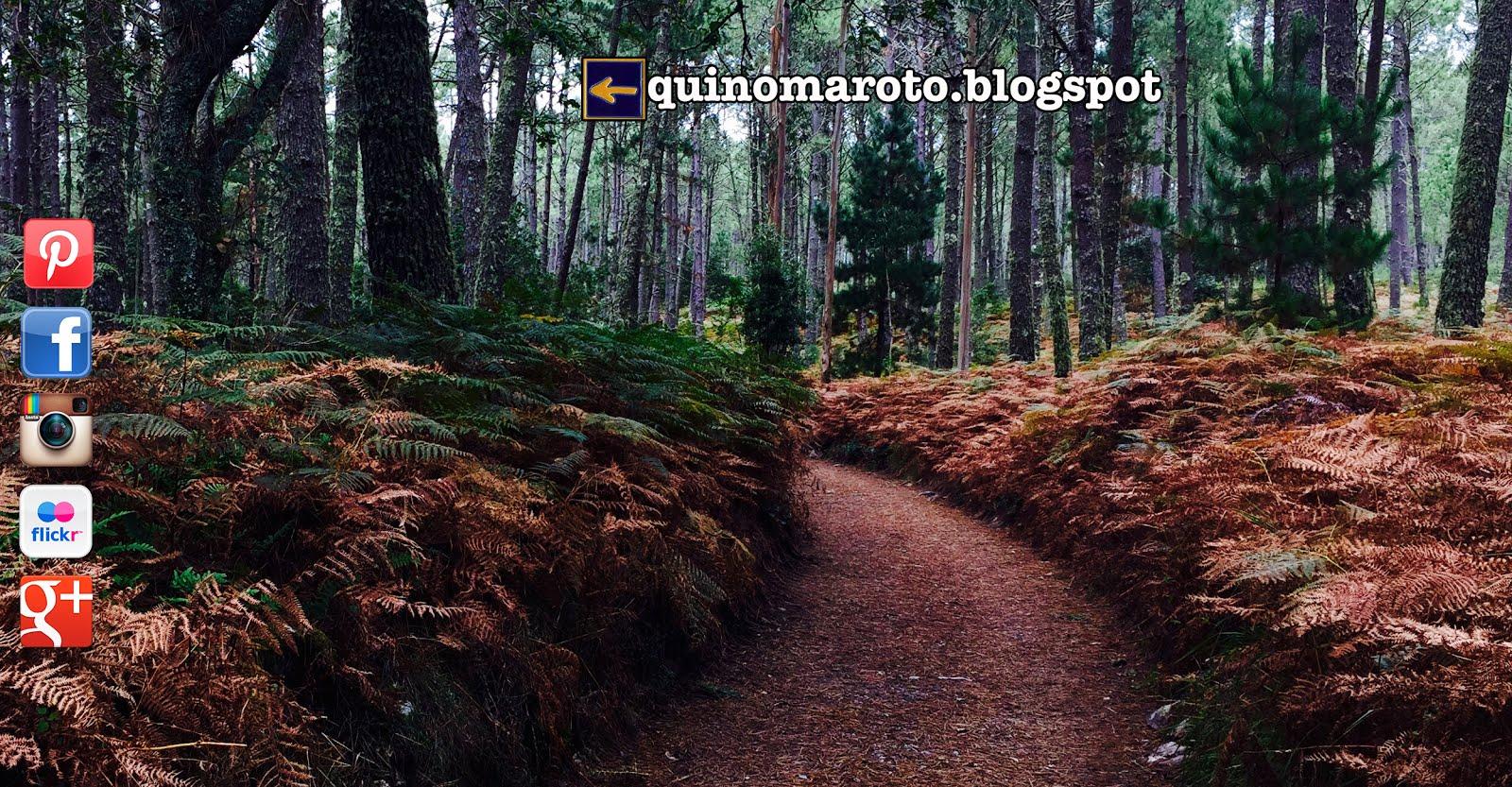 Quino Maroto