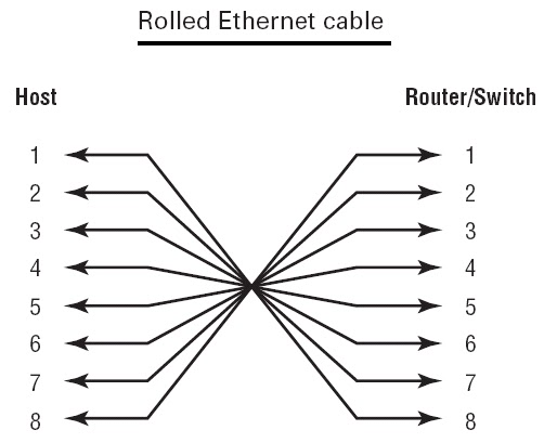free training of ccna and mcse  lecture 4  network cabling