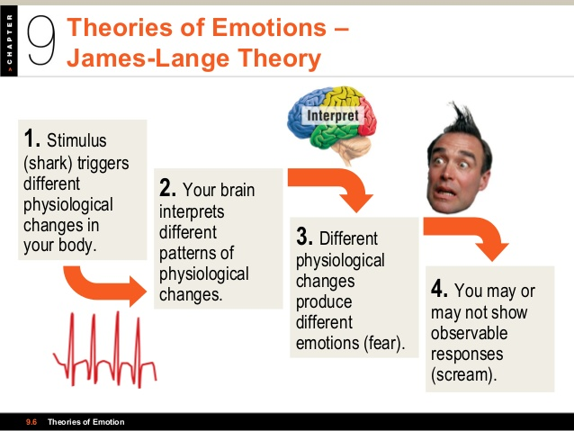 levels of consciousness: TEORIES OF EMOTIONS