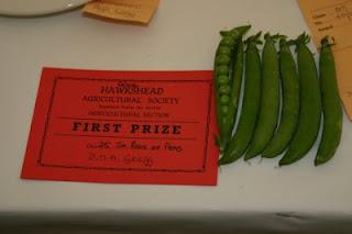 hawkshead show prize