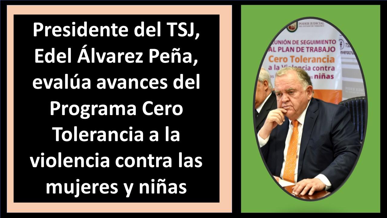 Presidente del TSJ
