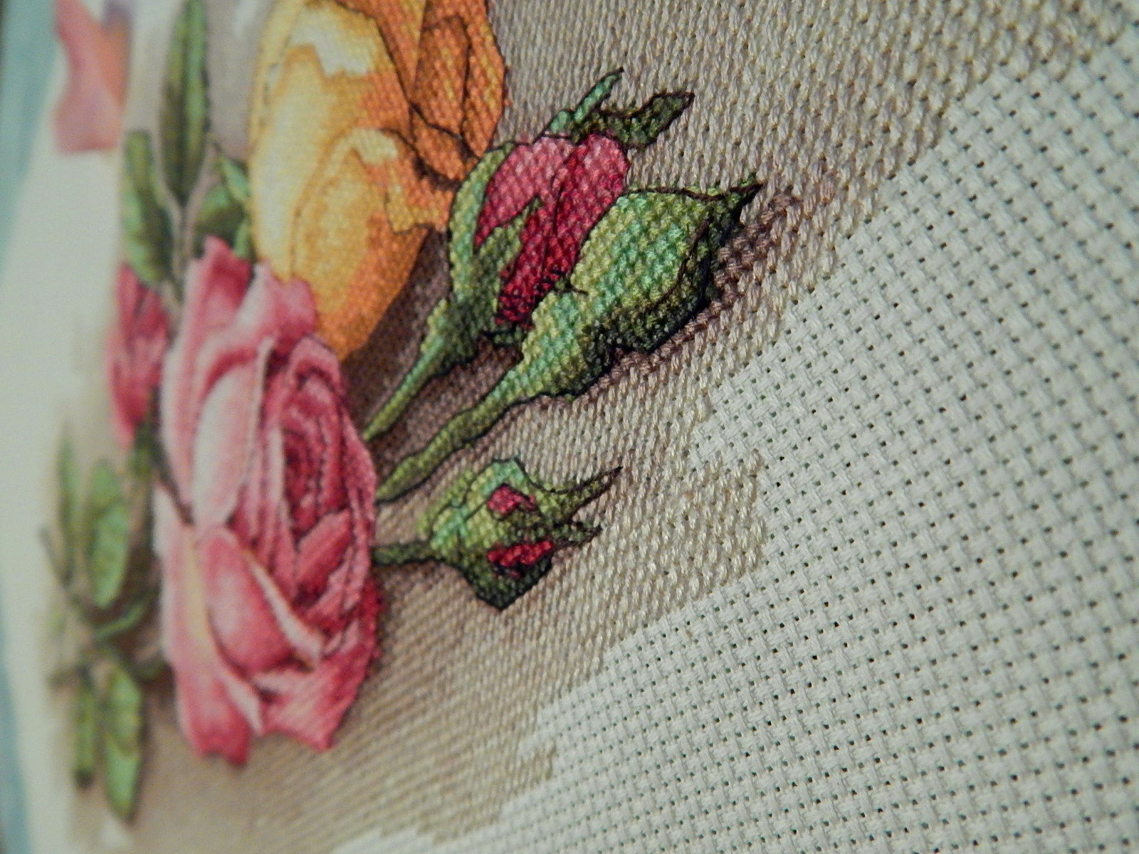 Вышивка срезанные розы дименшенс 72