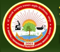 Ayurveda Department Rajasthan Medical Officer Recruitment 2013 www.dsrrau.org Apply online for 400 Medical Officer Posts