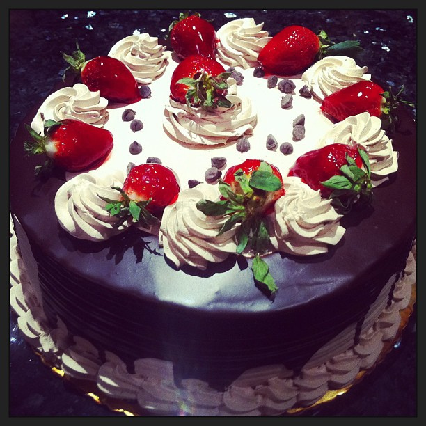 New World Birthday Cakes Wellington