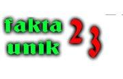 faktaunik 23