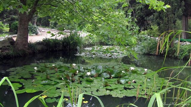 Каскад прудов Райский уголок