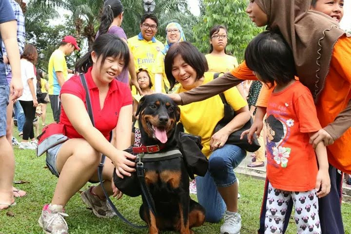 The success of I want to touch a dog event