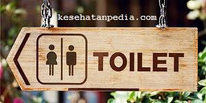 Jenis-jenis toilet