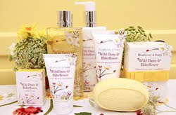Heathcote & Ivory launches Wild Daisy & Elderflower collection