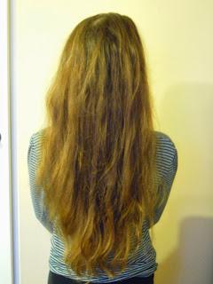 Aktualizacja włosowa Grudzień 2013